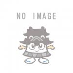 岩田コーポレーション